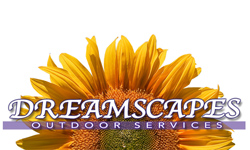 Dreamscapes Outdoor Services
